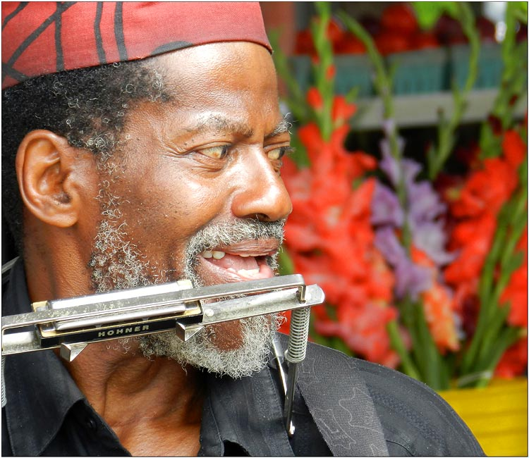 Musician of the market